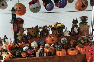 Fall is the Perfect Time for Shopping at Cowtown Farmers Market